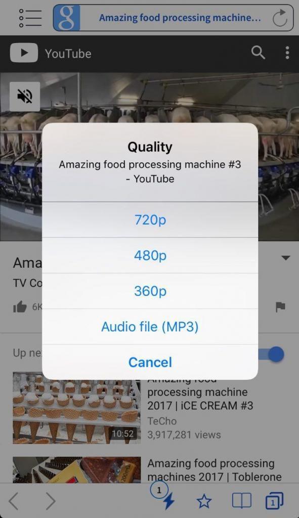 5 تحميل مقاطع الفيديو من يوتيوب على iPhone 591x1024 591x1024 - بهذه الطريقة يمكنك تحميل فيديوهات يوتيوب على آيفون وآيباد من تطبيق FoxFM