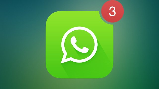 whatsapp bildirim sorunu - بالصور.. تعرف على كيفية تخصيص نغمة تنبيه مميزة لكل من تتواصل معهم عبر واتساب