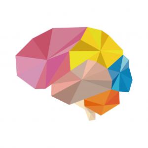 لعبة brain wars 300x300 - أفضل ألعاب ذكاء للاندرويد 2020