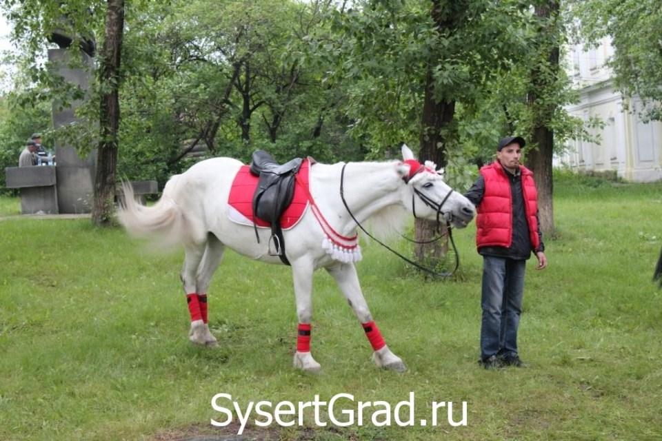 На дне города катали на лошадях