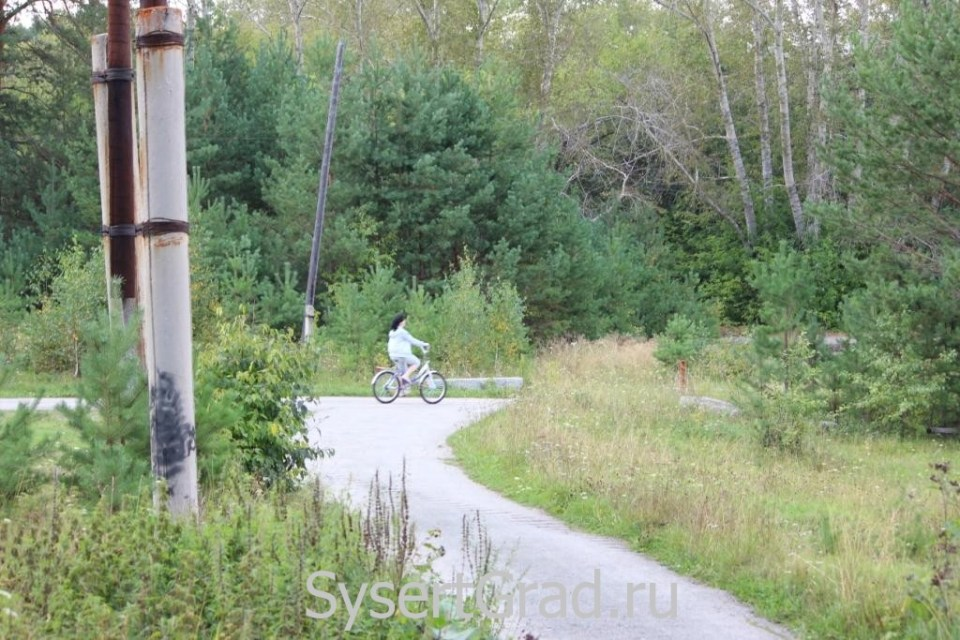 Попутчики из Сысерти в Екатеринбург и обратно