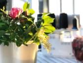 """Sommeren byr på mange flotte blomster - her er nyperoser med hylleblomster satt i en Alto-vase som pynt i min """"nye"""" systue"""