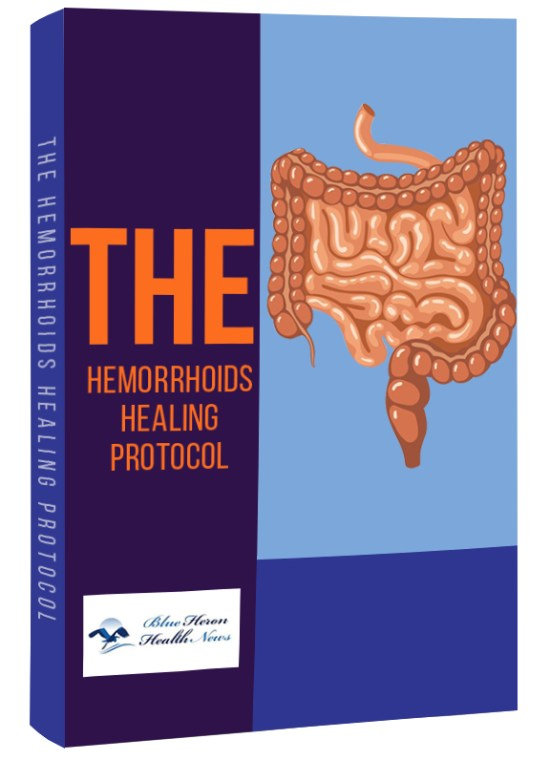 The hemorrhoids healing protocol