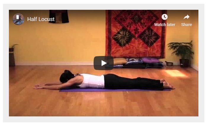 ShapeShifter Yoga reviews