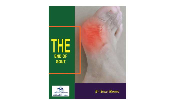 The End of Gout review