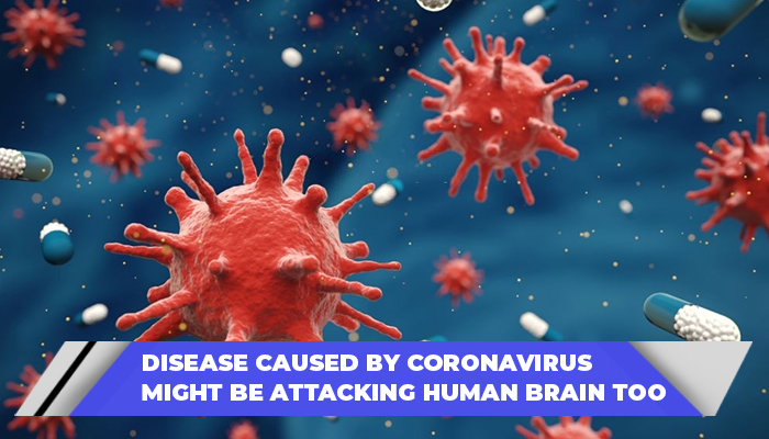 Disease Caused By Coronavirus Might Be Attacking Human Brain Too