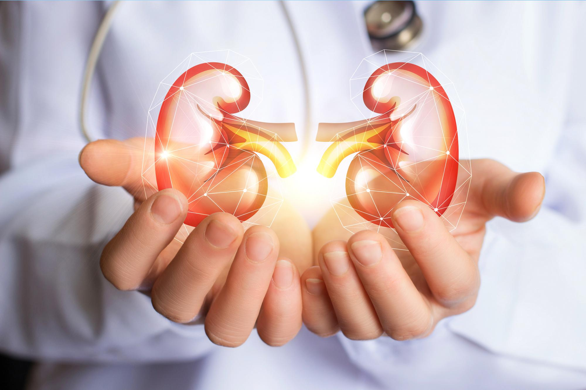 How To Keep Away From Chronic Kidney Diseases?