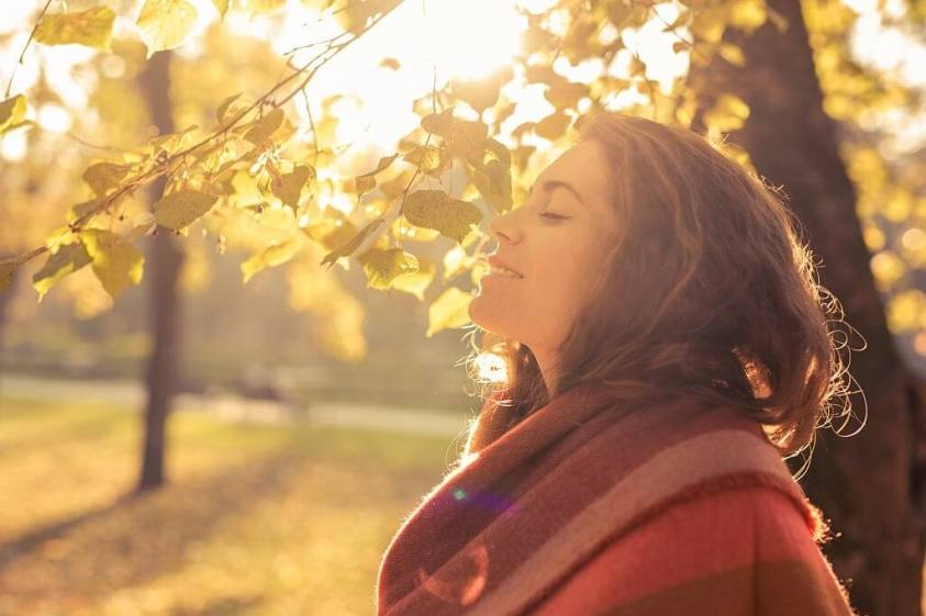 Inner Peace: How To Manifest Peace In Difficult Times?
