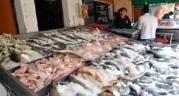 Ofrece Profeco  recomendaciones para identificar pescado 'fresco'