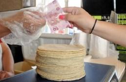 No hay motivo para subir el precio de la tortilla: Profeco