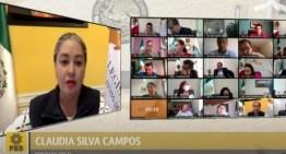 La diputada Claudia Silva  propone crear la Ley de Salud Mental