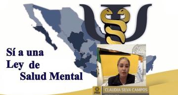 Aprueban metodología para crear Ley de Salud Mental