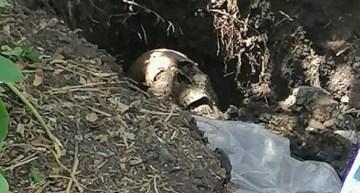 Ya han encontrado más de 150 cadáveres en fosas clandestinas
