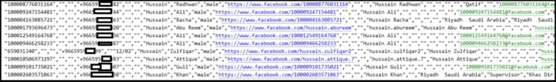 The list of phone numbers associated with Facebook accounts. Credits: Alon Gal