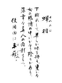 蝉羽 手書き解説