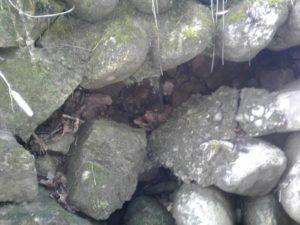 水路の穴before