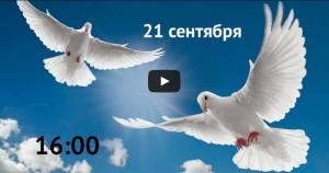 Видео Марша мира
