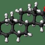 ステロイドは体内で作られるホルモンの一つ。ステロイドホルモンの種類をまとめました。