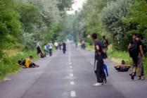Július 16. Déli határ, Ásotthalom térsége 1. Fotó - Toroczkai László