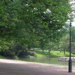 Zöld park és vízpart
