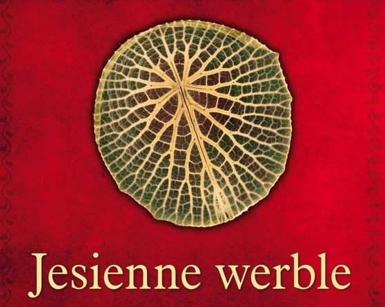 Diana Gabaldon, Jesienne weble ebook