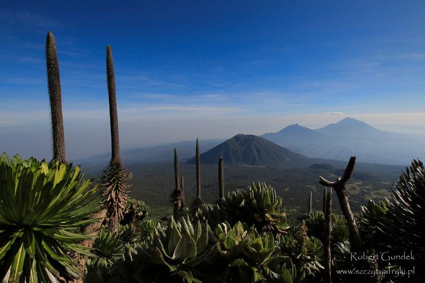 Najwyższa góra Rwandy - Karisimbi