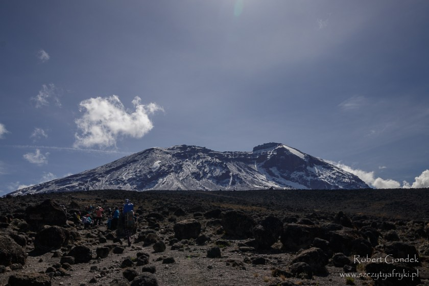 Kilimandżaro w lodzie