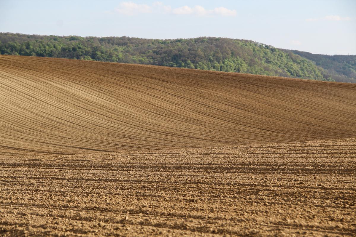mezőgazdaság föld hegy domb taliándörögd f szűcs dániel szegeder