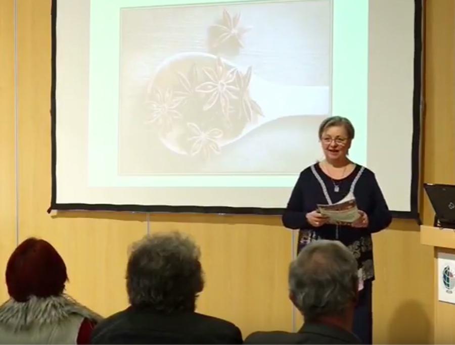 Csillagánizs dr. Nyári Zsuzsa előadása