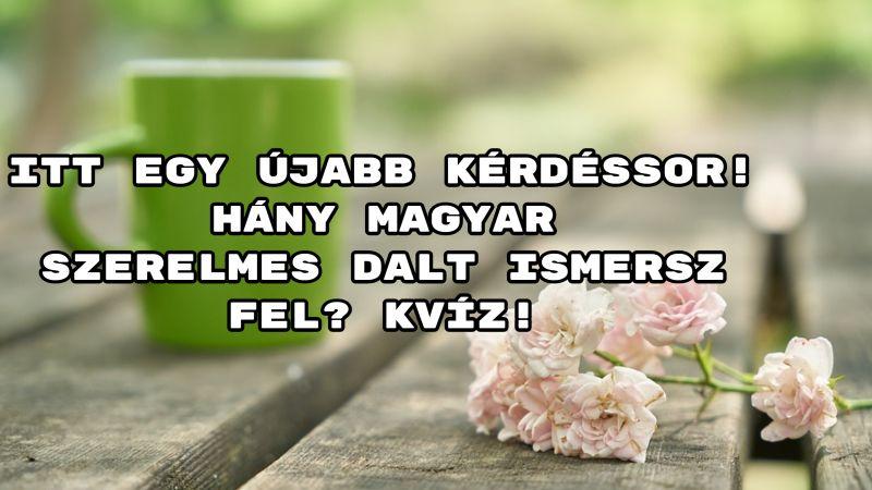 Itt egy újabb kérdéssor! Hány magyar szerelmes dalt ismersz fel? Kvíz!