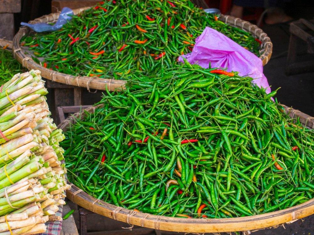 targ w Birmie