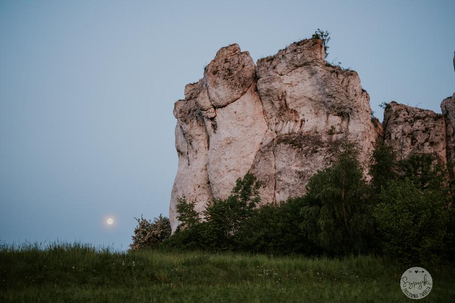 sesja narzeczeńska Kraków