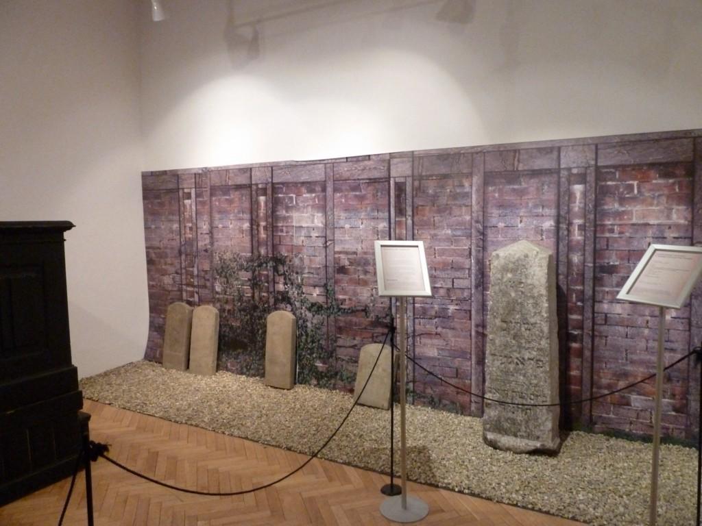 Wystawa 15.02.2012 (5)