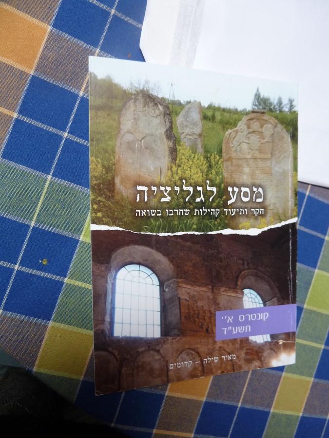 Book Meir Shilloh (1)
