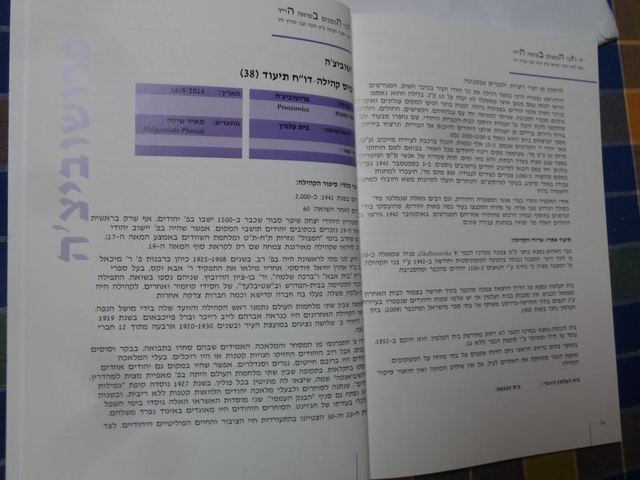 Book Meir Shilloh (7)