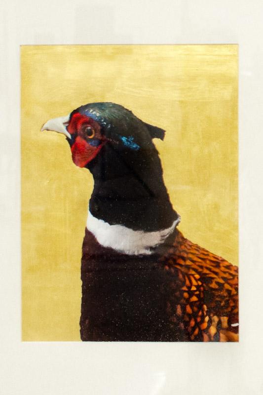 Goldgrund-Tiere-Taube-Fasan