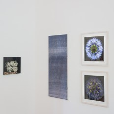 Ausstellung UpArtTGT_USD2018-1842_1200