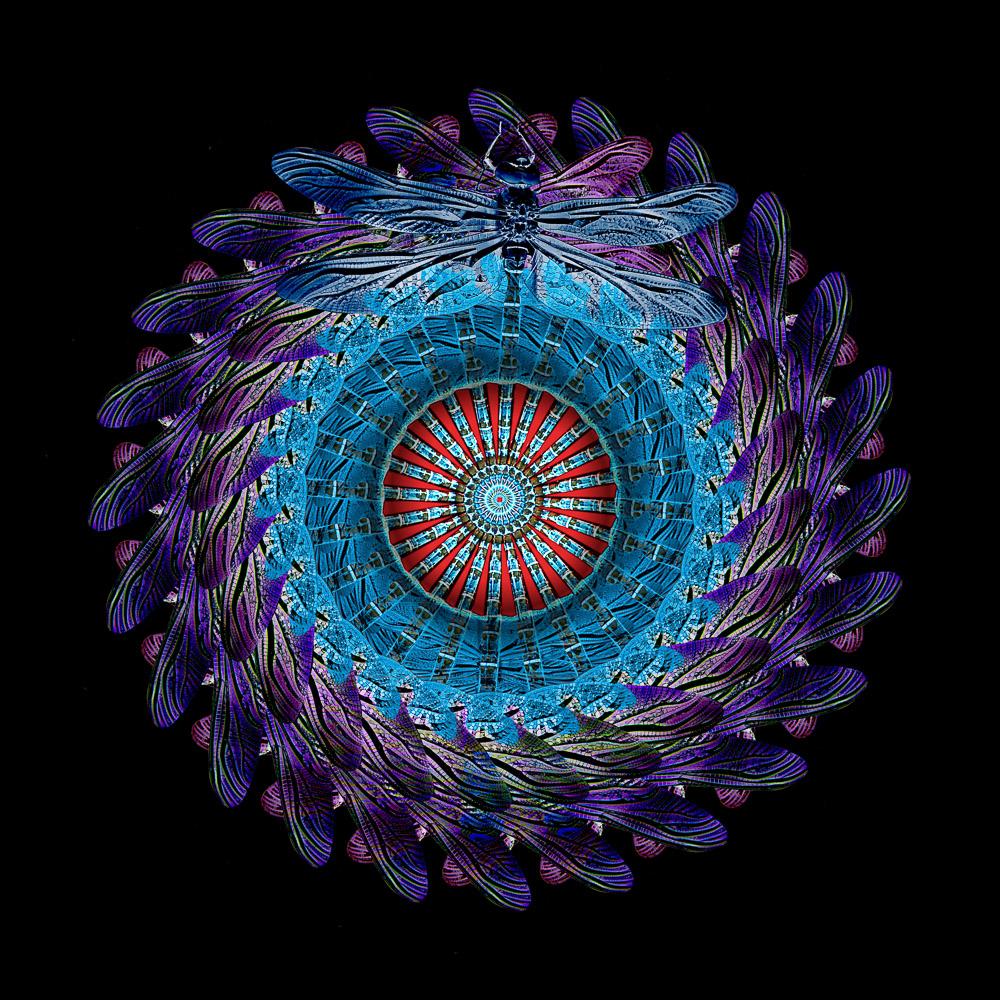 uploads - Leuchtcube-UpSideDown_Libell1.jpg