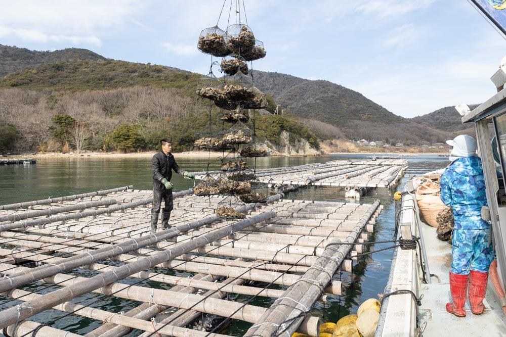 株式会社公栄水産様の撮影 牡蠣の養殖場へ