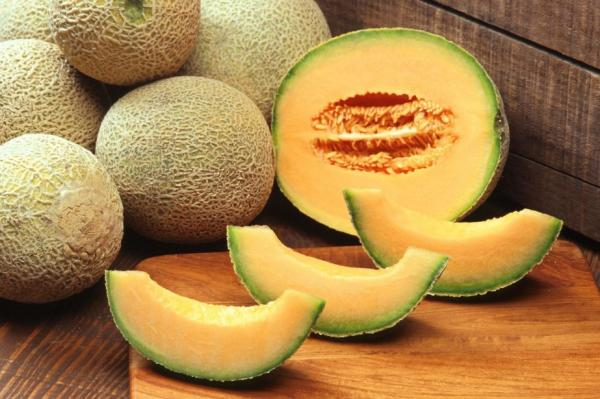 8 types of melons - Galia