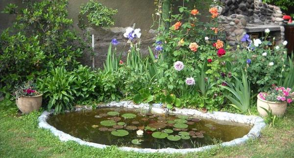 Turn a garden into a biodiversity paradise - Why put a pond?