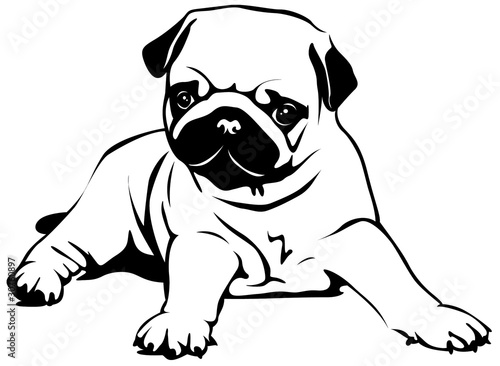 pug cartoon coloring pages