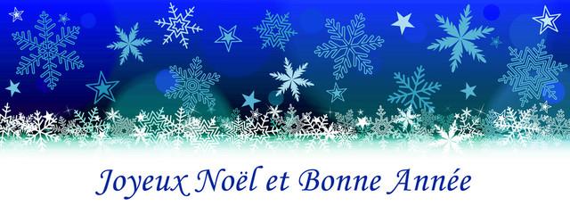 Bald Eagle Merry Christmas And Happy New Year Joyeux