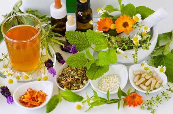 الأطعمة المحظورة في الحمل ولماذا - أعشاب وحقن