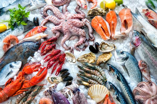 الأطعمة المحرمة في الحمل ولماذا - المأكولات البحرية النيئة