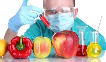 Resultado de imagen para imagenes de alimentos transgenicos