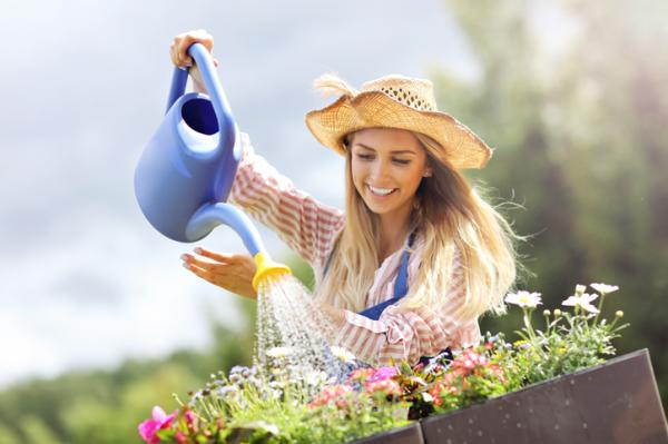 When to Water Plants - Common Mistakes When Watering Plants