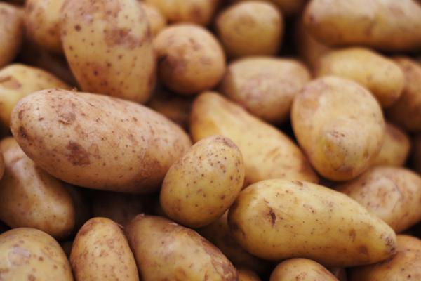 Types of Potatoes - Spunta Potato