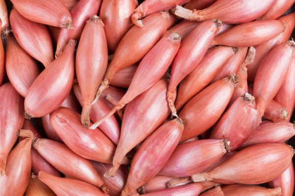 Types of Onion - French Onion or Shallot