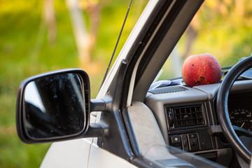 Ein Apfel für unterwegs